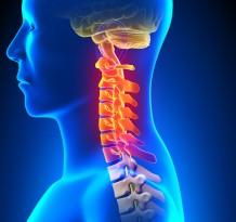 Chiropractor verse Mind